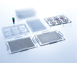 384 Well BiO Assay Kit