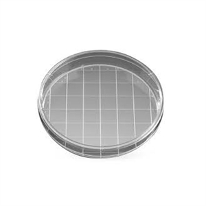 Falcon Cell culture dishes PS TC, 150 x 25 mm, w/Grid
